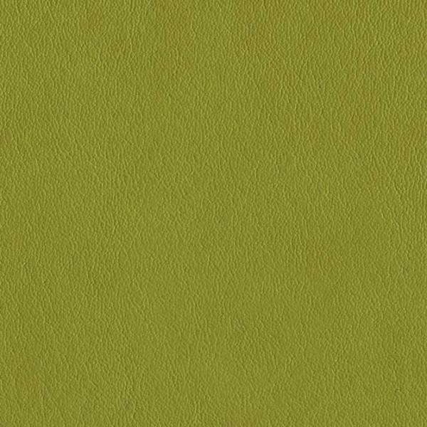 skai® Palma NF limone F6411195, skai® grün, Kunstleder, Fauck Lederhandel Berlin
