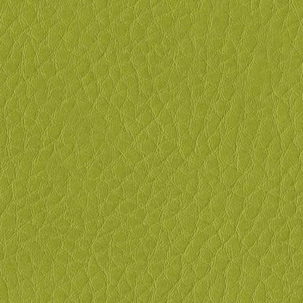 skai® Parotega NF limone F6461657, skai® grün, Kunstleder, Fauck Lederhandel Berlin