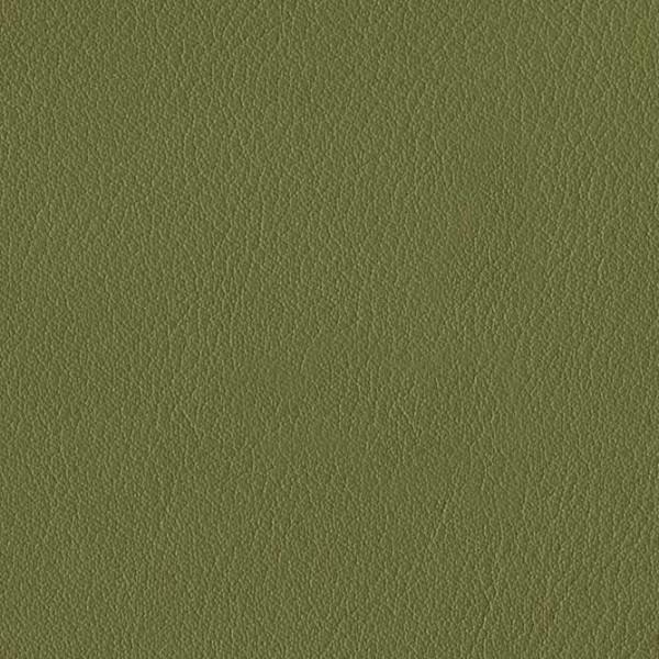 skai® Palma NF olivgrün F6411196, skai® grün, Kunstleder, Fauck Lederhandel Berlin