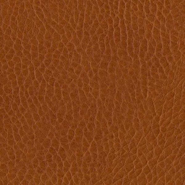 skai® Parotega NF sherry F6461654, skai® orange, braun, rot, Kunstleder, Fauck Lederhandel Berlin